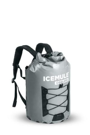 Get ready for spring break travel with IceMule